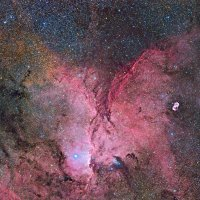 NGC 6188 Remote Session - Bearbeitung Dieter Willasch